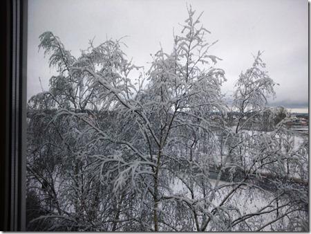 вид из окна - февраль