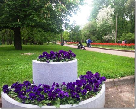 в парке Екатерингоф